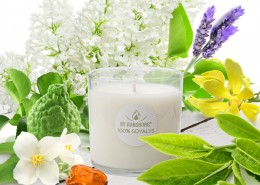 WhiteTea_soy candle